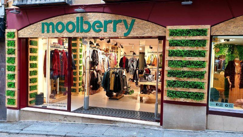 Moolberry_Toledo